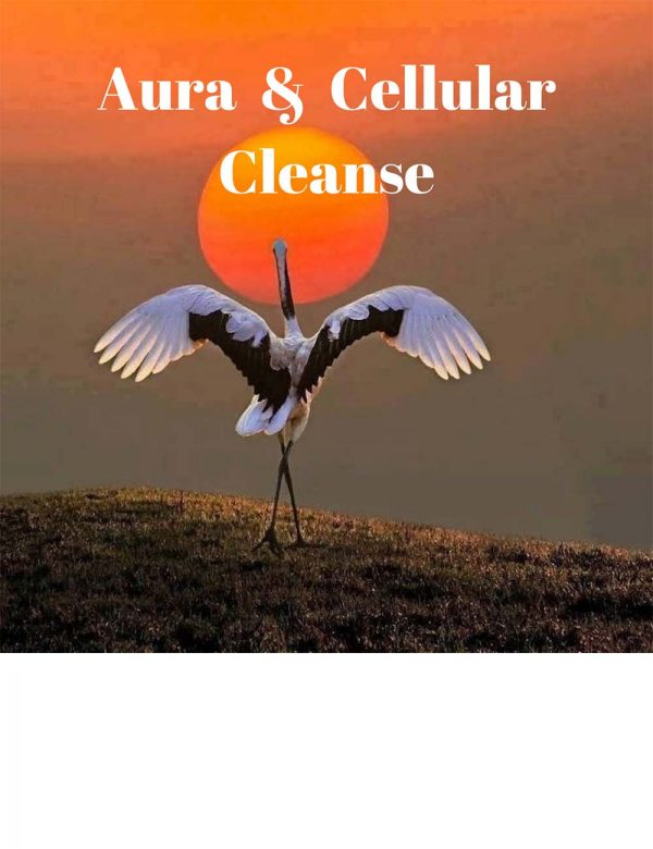 Aura and Cellular Cleanse